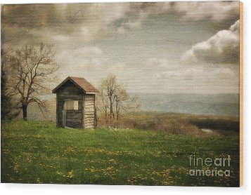 Room With A View Wood Print by Lois Bryan