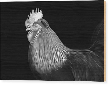 Rooster Wood Print by Marion Johnson
