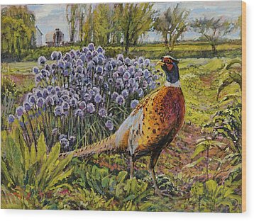 Rooster Pheasant In The Garden Wood Print