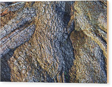 Wood Print featuring the photograph Root Waves by Glenn McCarthy Art and Photography