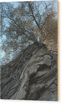 Roots Wood Print by Brigid Nelson