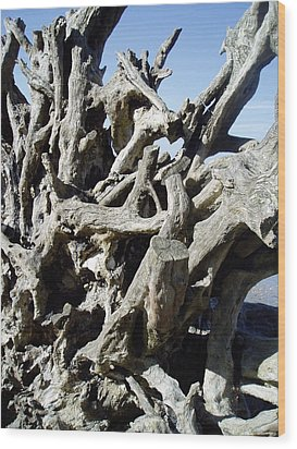 Wood Print featuring the photograph Roots by Mira Cooke