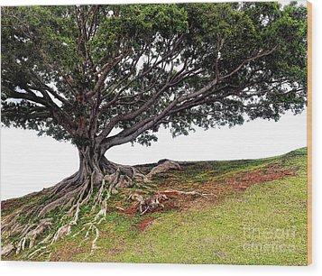 Roots Of Honolulu Wood Print by Gina Savage