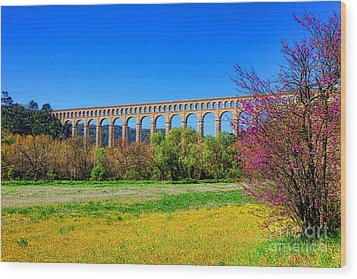Roquefavour Aqueduct Wood Print by Olivier Le Queinec