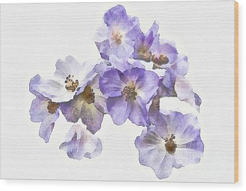Rosa Canina - Watercolour Wood Print