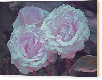 Rose 118 Wood Print by Pamela Cooper