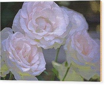 Rose 120 Wood Print by Pamela Cooper