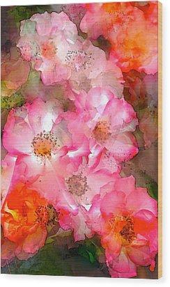 Rose 140 Wood Print by Pamela Cooper