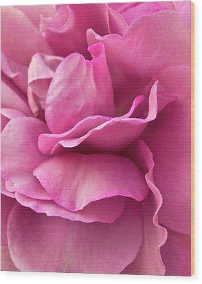 Rose Affair Wood Print by Gwyn Newcombe