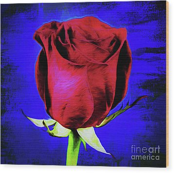 Rose - Beauty And Love  Wood Print
