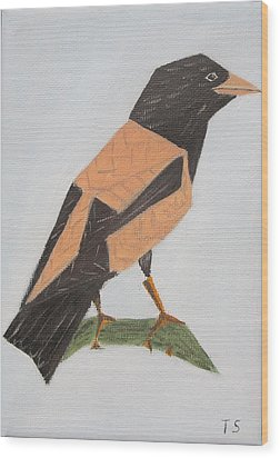 Rose-coloured Starling Wood Print