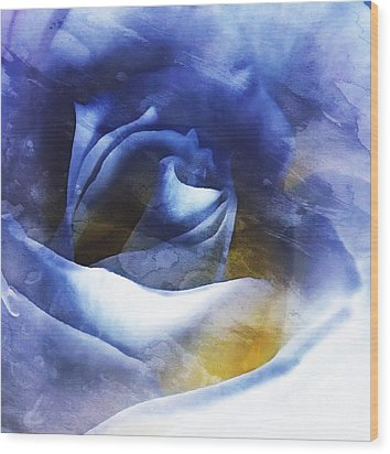Wood Print featuring the photograph Rose - Daydreams - Dreamscape by Janine Riley