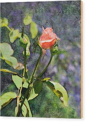 Rose Elegance Art Wood Print