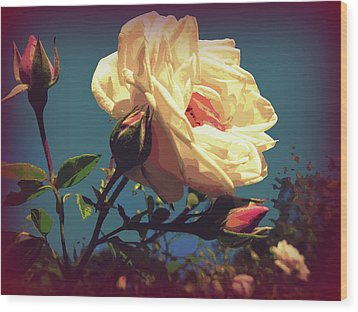 Rose Facing The Sun Wood Print