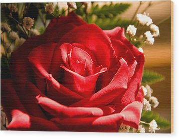 Rose For My Valentine Wood Print by Thomas R Fletcher