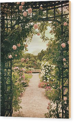 Wood Print featuring the photograph Rose Garden Grace by Jessica Jenney