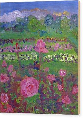 Rose Gardens In Minneapolis Wood Print