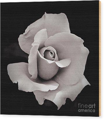 Rose Wood Print by Hitendra SINKAR