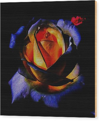Rose II Wood Print by Mohammed Nasir