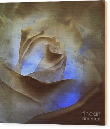 Wood Print featuring the photograph Rose - Night Visions  by Janine Riley