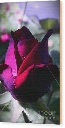 Rose Of Love Wood Print