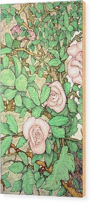 Rose Panel No 1 Wood Print by Edward Ruth