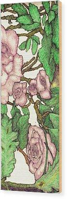 Rose Panel No 2 Wood Print by Edward Ruth