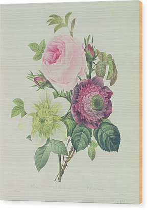 Rose Wood Print by Pierre Joseph Redoute