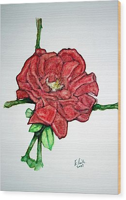 Rose Study No 1 Wood Print by Edward Ruth