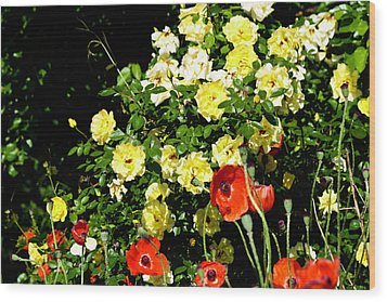 Roses And Poppies Wood Print by Teresa Mucha