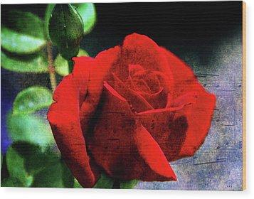Roses Are Red My Love Wood Print by Susanne Van Hulst