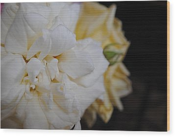 Roses Wood Print by Bransen Devey
