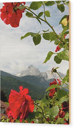 Wood Print featuring the photograph Roses Of The Zugspitze by KG Thienemann