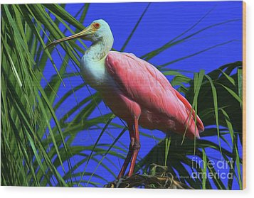 Wood Print featuring the painting Rosetta Spoonbill Alligator Farm by Deborah Benoit