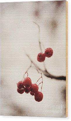 Rote Beeren - Red Berries Wood Print