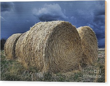Wood Print featuring the photograph Round Bales by Brad Allen Fine Art