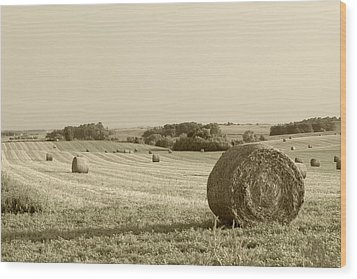 Wood Print featuring the photograph Round Bales by John Hix