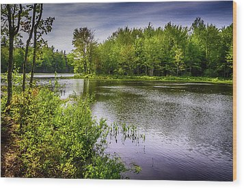 Wood Print featuring the photograph Round The Bend In Oil 36 by Mark Myhaver