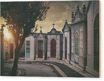Wood Print featuring the photograph Row Of Crypts by Carlos Caetano