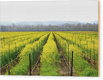 Rows Of Wild Mustard Wood Print by Tom Reynen