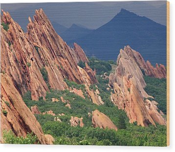 Roxborough State Park Wood Print