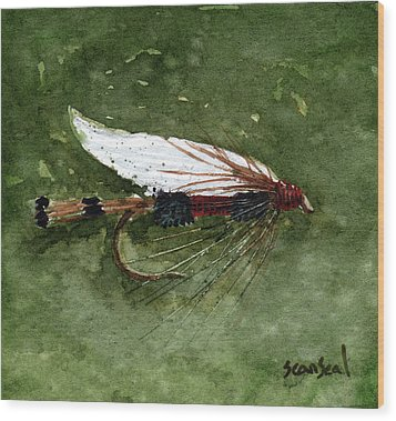 Royal Coachman Wet Fly Wood Print by Sean Seal