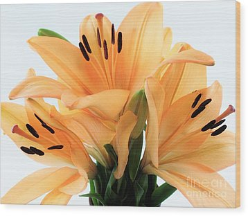 Wood Print featuring the photograph Royal Lilies Full Open - Close-up by Ray Shrewsberry