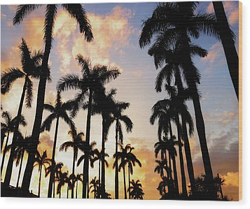 Royal Palm Way Wood Print by Josy Cue