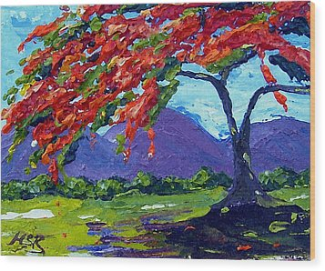 Royal Poinciana Palette Oil Painting Wood Print by Maria Soto Robbins