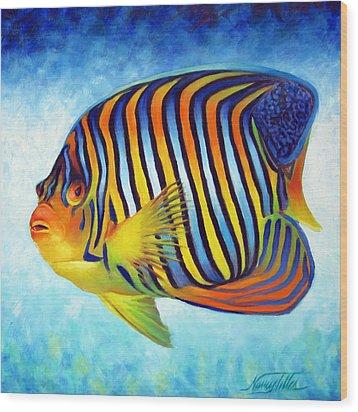 Royal Queen Angelfish Wood Print by Nancy Tilles