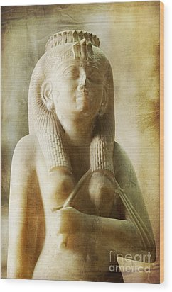 Royal Women In Ancient Egypt. Wood Print by Mohamed Elkhamisy