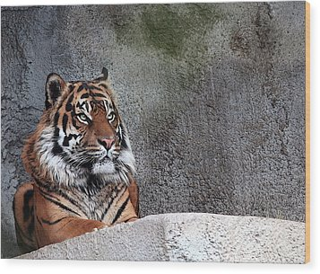 Royality Wood Print by Cherie Duran