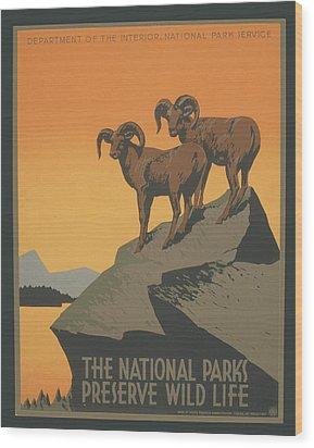 Rreserve Wildlife Wood Print by Unknown