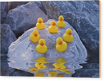 Rubber Ducks In The Wild Wood Print by Shelly Stallings